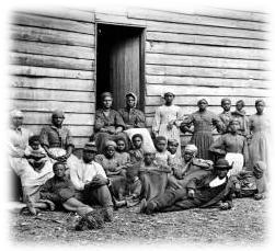 plantationfamily